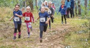 Über Stock und Stein: Leichtathleten laufen in den Herbst